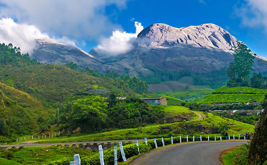 Places In Munnar
