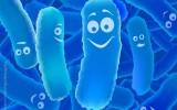 Heath Benefits,Consume Probiotics,Foods,Yogurt,Consuming Probiotics
