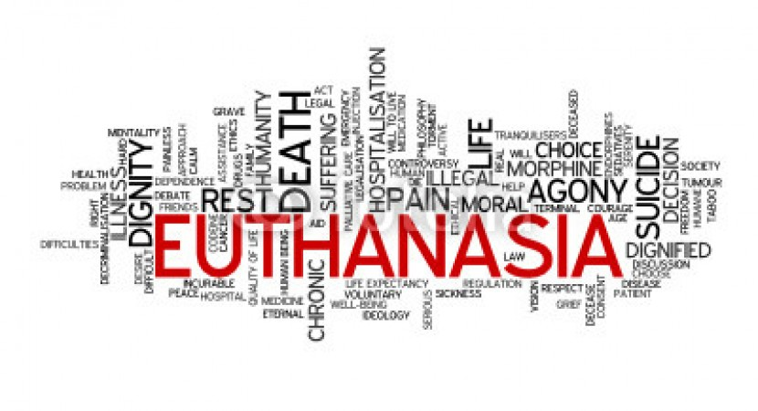 an argument in favor of euthanasia in the united states Arguments for and against euthanasia pros why make a terminally ill patient go through all the pain and suffering, instead just painlessly put an end to this is because this objective can be fulfilled even in the absence of euthanasia the family in question instead of actively taking part in the killing.