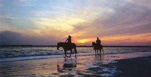 Amelia Islands,Florida,Beach