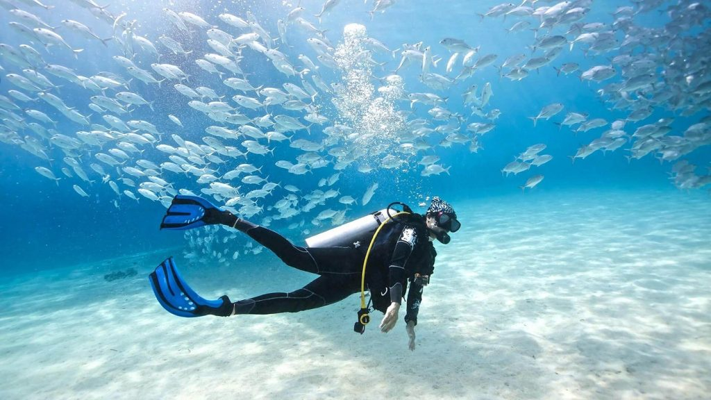 Scuba Diving, US, Popular Scuba Diving Destinations In The US