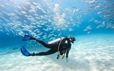 Scuba Diving, US, Popular Scuba Diving Destinations In The US